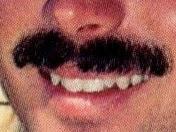 JodyReed'sMustache